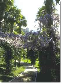 L'arboreto di Arco di Trento.
