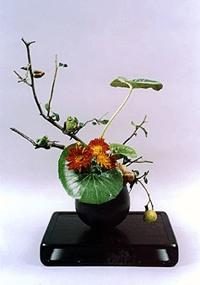 Composizione di Sachiko Woo, Ohara Scool.